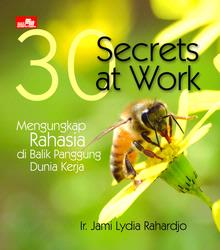 30_Secrets_at_Work